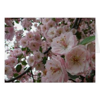 Hübsch im Rosa Karte