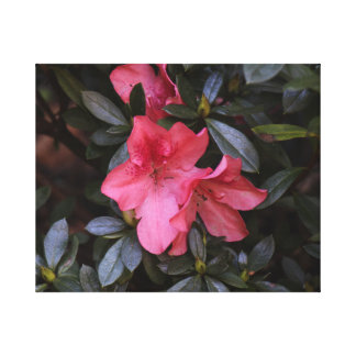 Hübsch in den rosa Blumen Leinwanddruck