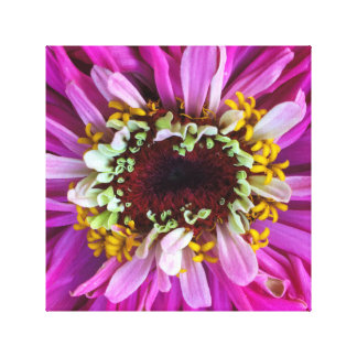 Hübsch in der lila Blume Leinwanddruck