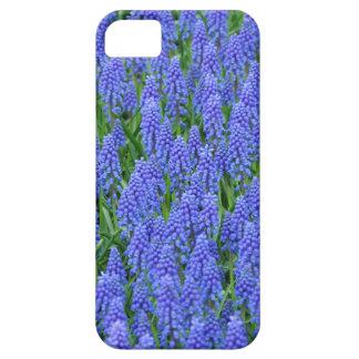 Hübsche blaue Muscari-Blumen Barely There iPhone 5 Hülle