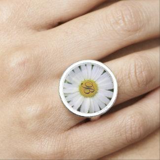 Hübsche BlumenFotokunst des weißen Gänseblümchens Ringe