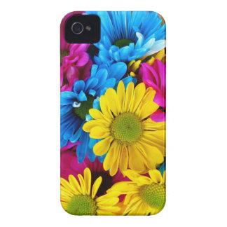 Hübsche Gänseblümchen-Blumen-bunte Blumenblatt-Ges iPhone 4 Etuis