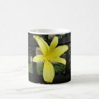 Hübsche gelbe Lilien-Blume Verwandlungstasse