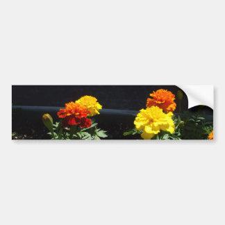 Hübsche gelbe und orange Ringelblumen Autoaufkleber