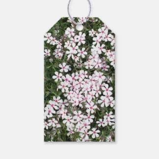 Hübsche kleine rosa Blumen Geschenkanhänger