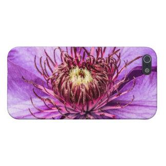 Hübsche lila Clematis-Blume Hülle Fürs iPhone 5