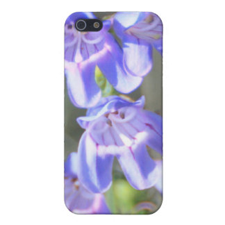Hübsche lila Wildblumen iPhone 5 Cover