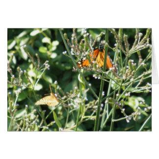 Hübsche Monarch-Schmetterlinge Karte