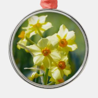 Hübsche Narzissen, Narzisse 03,3 Rundes Silberfarbenes Ornament