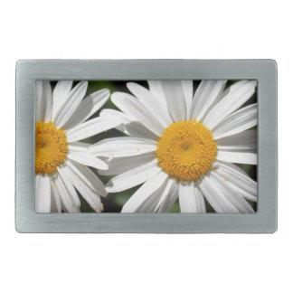 Hübsche reine Blumen des weißen Gänseblümchens Rechteckige Gürtelschnallen