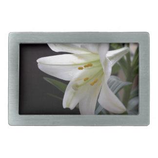 Hübsche, reine weiße Osterlilien-Blume im Rechteckige Gürtelschnallen
