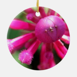 Hübsche rosa flockige küssende Blume Rundes Keramik Ornament