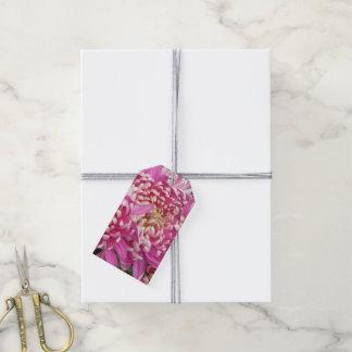 Hübsche rosa Geschenk-Umbauten Geschenkanhänger