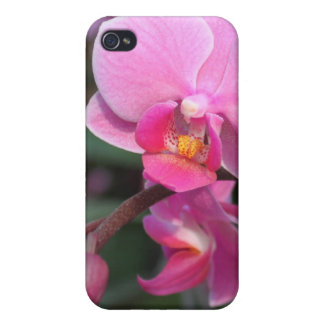 Hübsche rosa Orchideen-Blumen iPhone 4 Cover