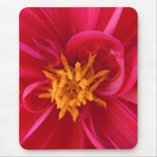Hübsche rote Dahlie - Mousepad
