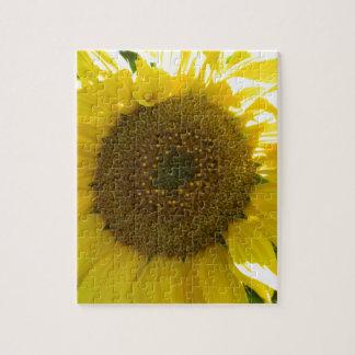 Hübsche Sonnenblume Puzzle