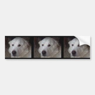 Hübscher große Pyrenäen-Hund Autoaufkleber
