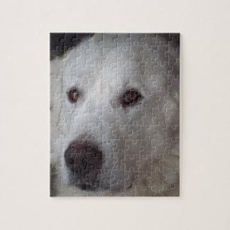 Hübscher große Pyrenäen-Hund Puzzle