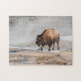 Hübscher junger Bison oder Büffel Puzzle