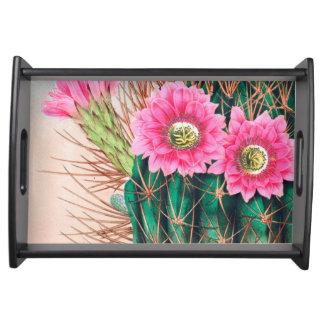 hübscher Kaktus Tablett