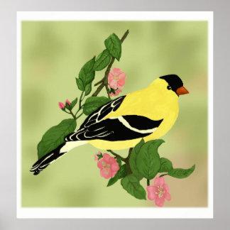 Hübscher kleiner Goldfinch-Vogel Poster
