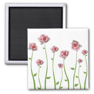 Hübscher kleiner Rosen-Magnet Quadratischer Magnet