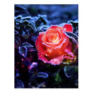 Hübscher magischer mattierter rosa postkarte