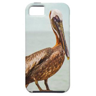 Hübscher Pelikan gehockt über dem Ozean Schutzhülle Fürs iPhone 5