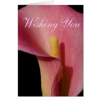 Hübscher rosa Calla-Geburtstag Karte