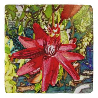 Hübscher roter Passionflower-Marmor-Stein Trivet Töpfeuntersetzer