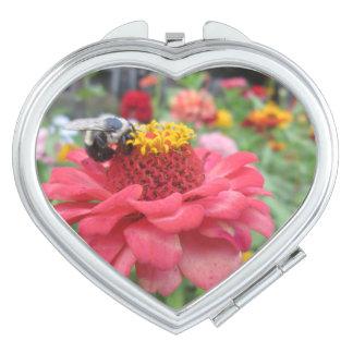 Pretty Zinnia with Bee