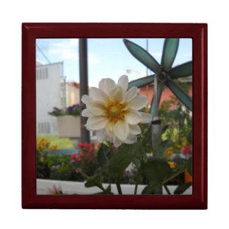 Hübsches Blume giftbox Schmuckschachtel