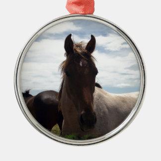 Hübsches Brown und weißes uneinheitliches Pferd, Silbernes Ornament