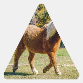Hübsches die Shetlandinseln-Pony Dreieckiger Aufkleber
