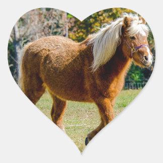 Hübsches die Shetlandinseln-Pony Herz-Aufkleber