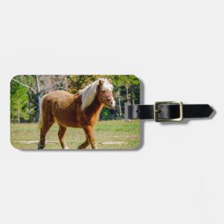 Hübsches die Shetlandinseln-Pony Kofferanhänger