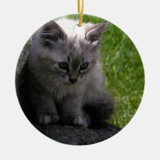 Hübsches Kätzchen Keramik Ornament