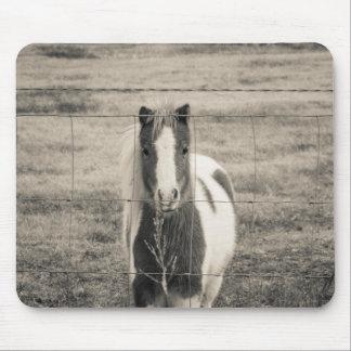 Hübsches Pony Mousepad