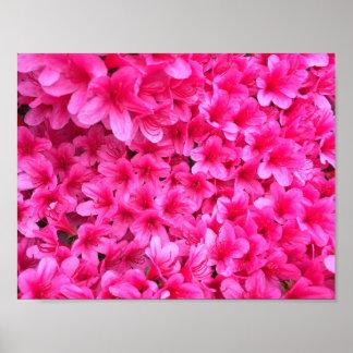 Hübsches rosa Blumen-Plakat Poster