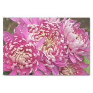 Hübsches rosa Seidenpapier