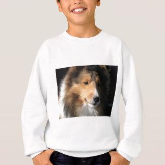 Hübsches sheltie Gesicht Sweatshirt