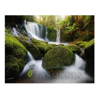Hufeisen-Fälle, Mt-Feld-Nationalpark, Tasmanien Postkarte