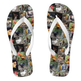 Huhn-und Hahn-Foto-Collage, Flip Flops