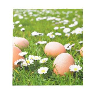 Huhneier im Gras mit Gänseblümchen Notizblock