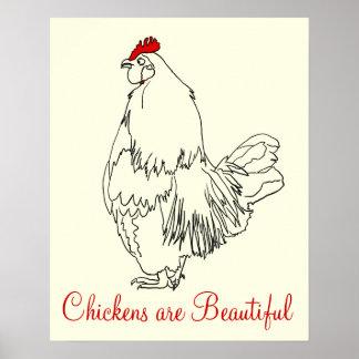 Hühner sind schönes lustiges Hahn-Kunst-Zeichnen Poster