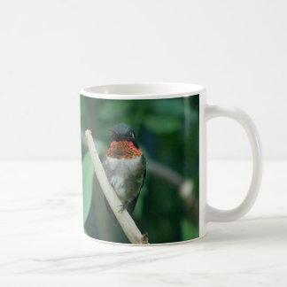 Huimmingbird, Becher Kaffeetasse
