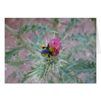 Hummel auf Distel-Blume Karte