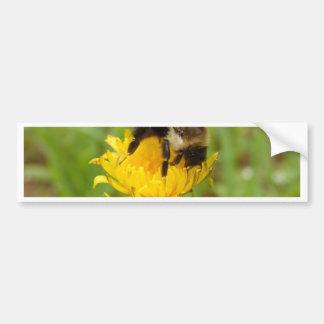 Hummel-Biene auf gelbem Dandilion Autoaufkleber