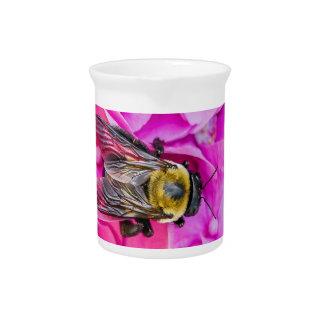 Hummel-Biene auf Hydrangea Getränke Pitcher