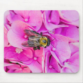 Hummel-Biene auf Hydrangea Mousepad